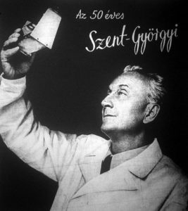 Albert Szent Gyorgy semiconduccion