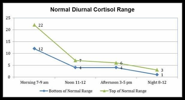 cortisol range