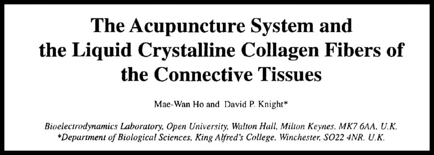 Acupuncture System in the Living Matrix, according to Ho and Knight