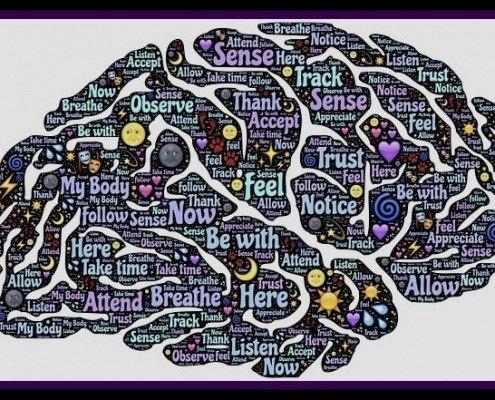 Cerebro Conciencia Humana