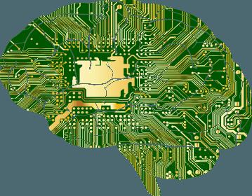 Consciousness Circuit