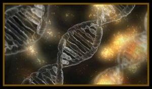 DNA Human Frequencies Consciousness