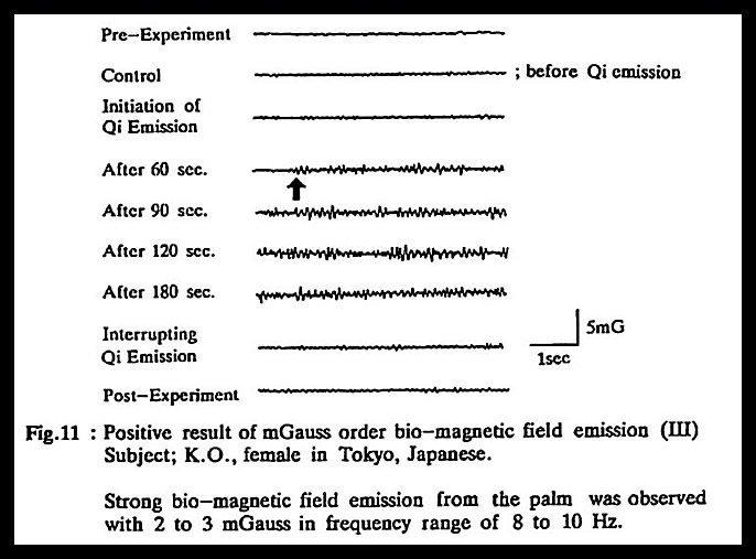 Akira Seto Biofield Frequencies 3