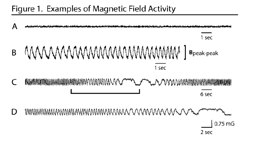 Magnetic Field Activity Moga