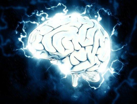 Cerebro eléctrico